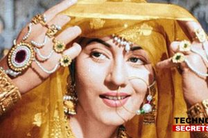 Madhubala's 86th birth anniversary: Born On Valentine's Day, Iconic Actress.